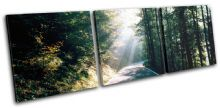 Forest Road Landscapes - 13-1383(00B)-TR31-LO